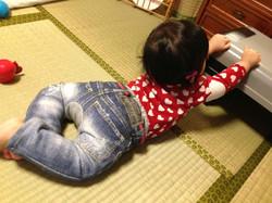 Ichigo_7